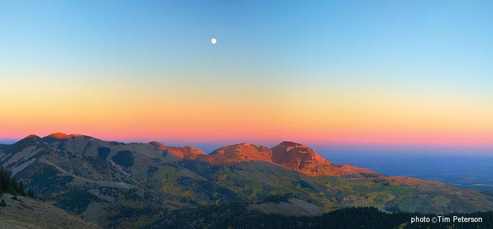 Abajo Mountains – Elk Ridge